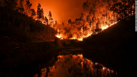 How Did the Deadly Portugal Wildfire Start?