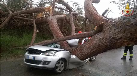 Extreme Weather Causes Death & Damage throughout Italy